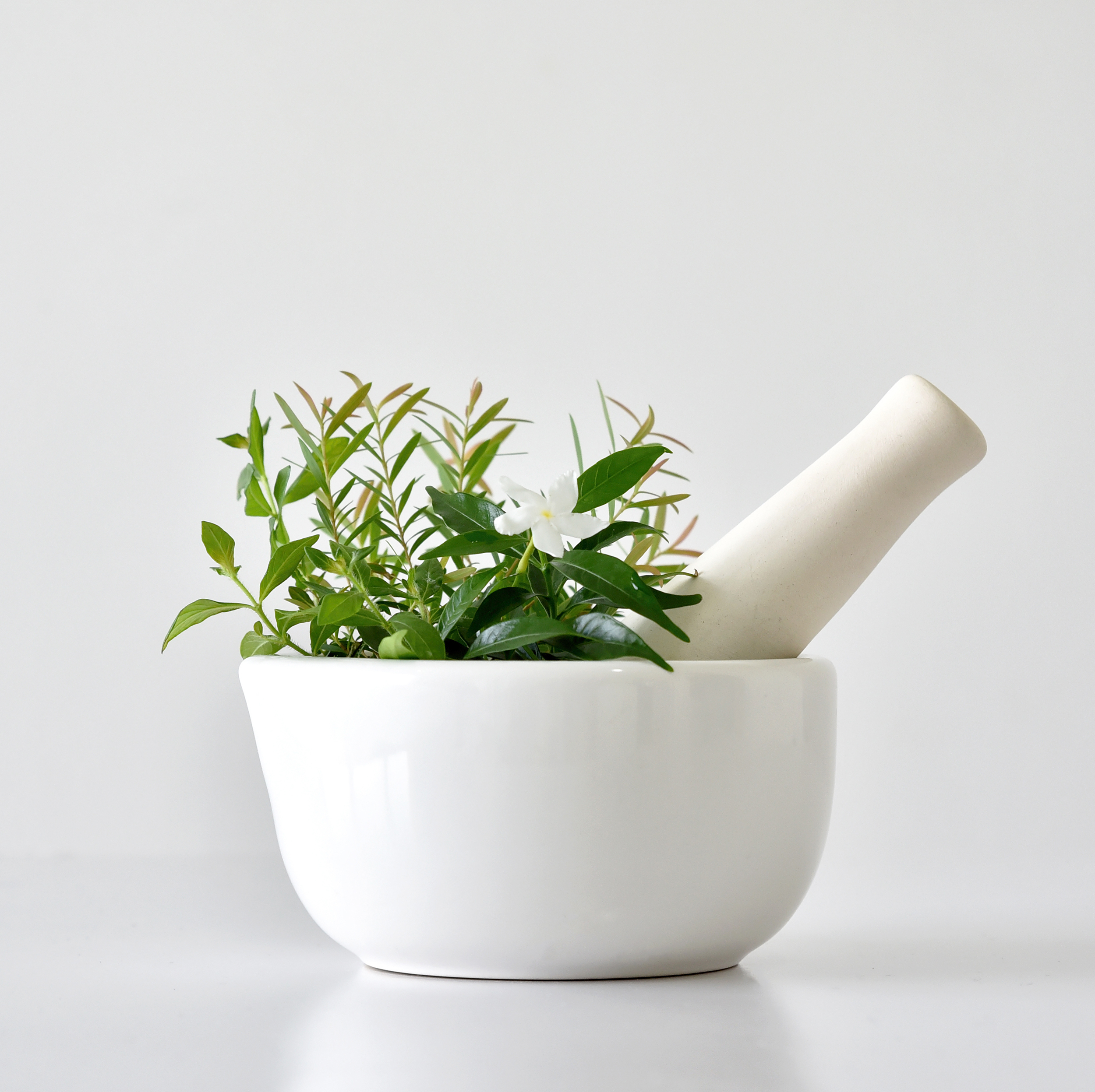 Mortar & pestle and herbs